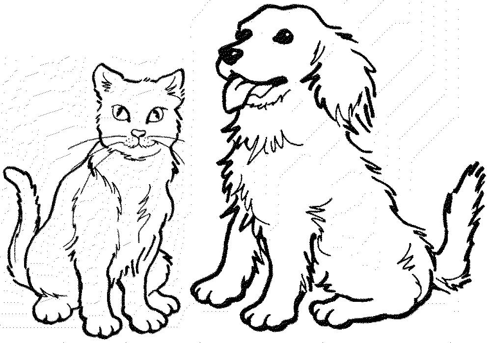 Раскраски кошка и собака | Животные