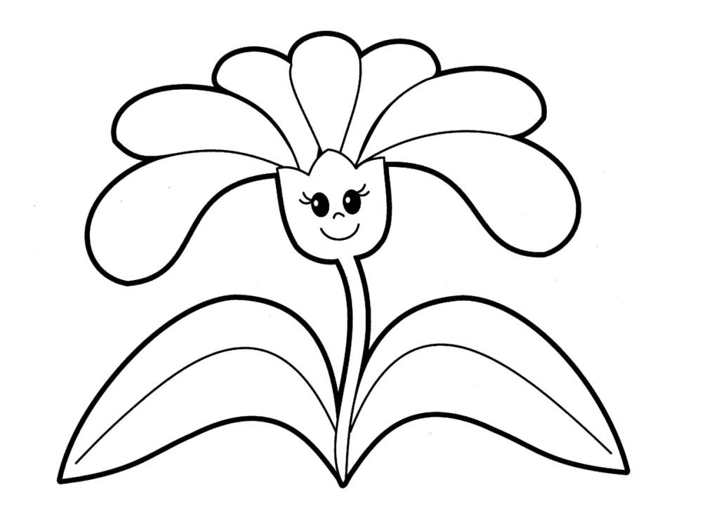 Раскраска Цветы крупные | Интересные